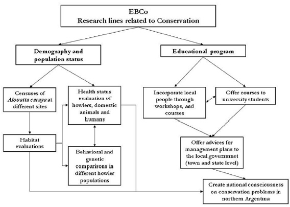 conceptual framework of a research paper